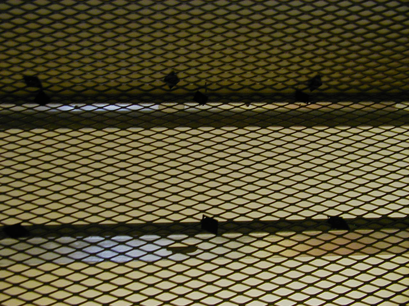 Amico Security Products Security Mesh